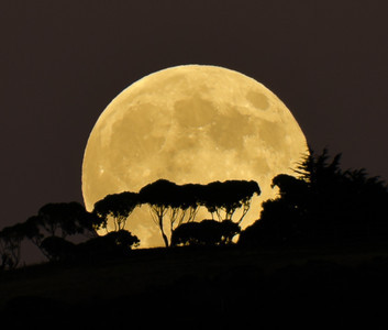 moon-8690